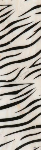 Kagyló lap - zebra